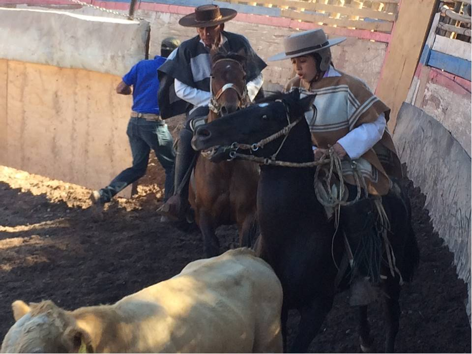 Rodeo in San Antonio de Naltahua