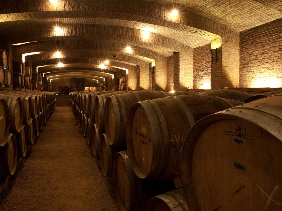 Undurraga Winery Cellar