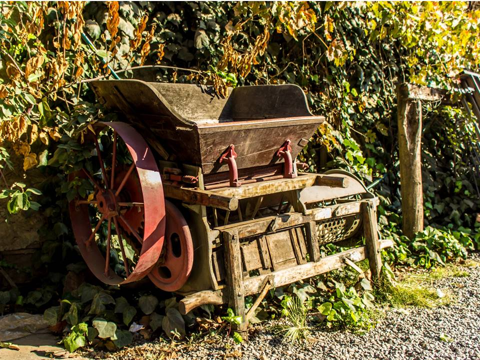 old grape crusher in Los Mesa winery