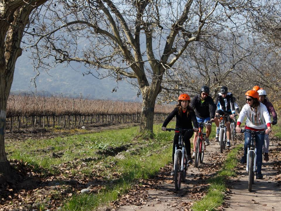 TerraMater bike wine tour
