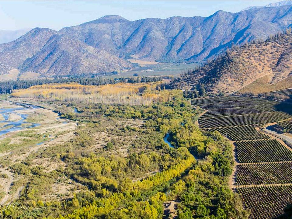 Wine tours and visit to wineries in Maipo Valley Santiago Chile