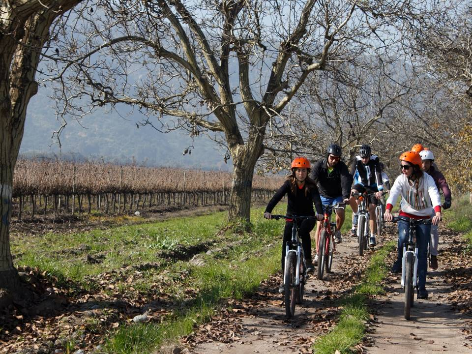 Bike wine tours in Maipo Valley Santiago Chile